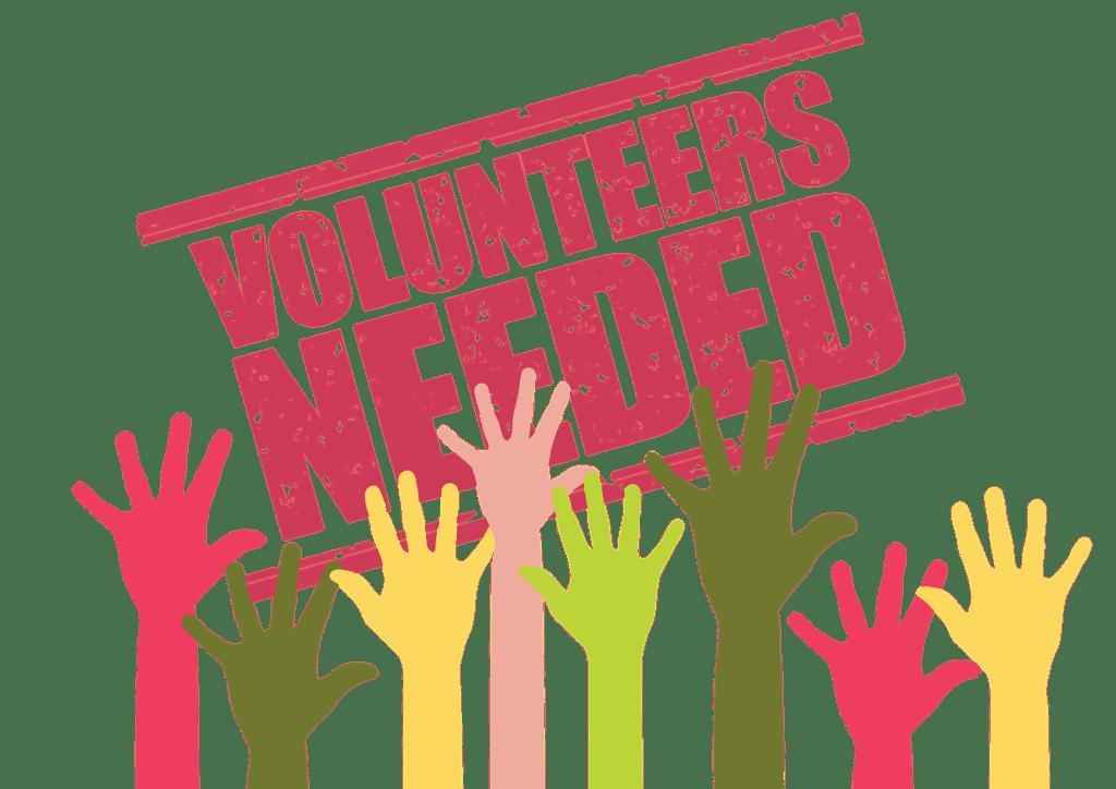 wolontariusze potrzebni